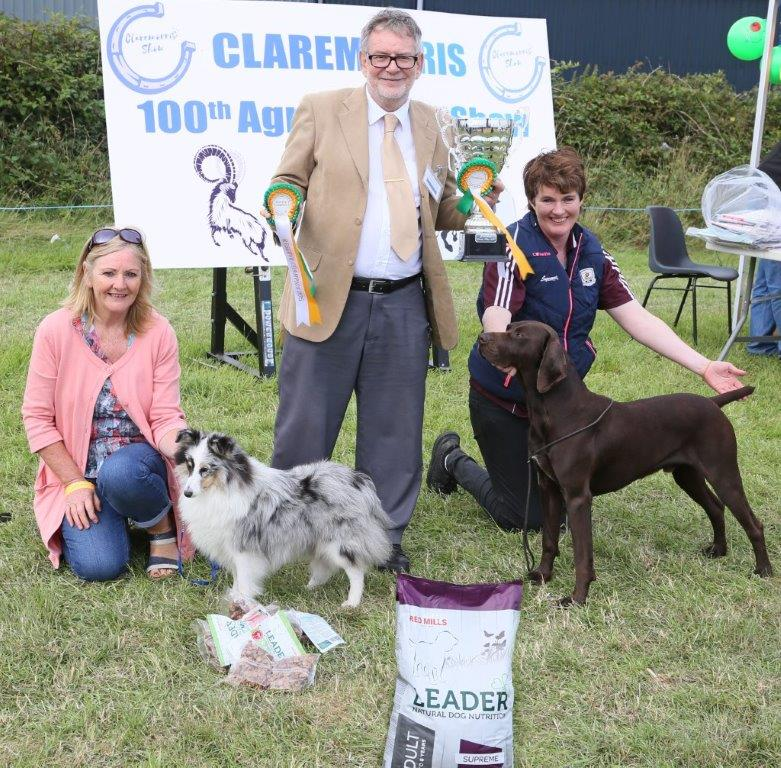 AO6U1449  Reserve and Champion Dogs