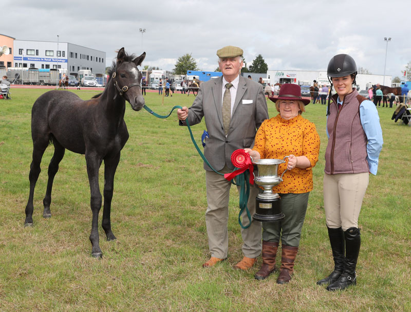 "Judges Valerie Davis and Amy Grady presenting the Michael Joyce Memorial Cup  for ""Best Colt or Filly Foal"" to Billy O'Malley Ballinrobe showing Ann and Billy O'Malley's foal at Claremorris 101st Agricultural Show 2019. Photo © Michael Donnelly"