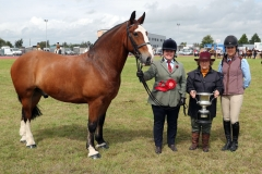 "Sinead Flaherty, Killala  winner at Claremorris 101st Agricultural Show 2019 with ""Cob Mare or Gelding shown in Hand"" Class 6, pictured with judges Valerie Davis and Amy Grady.  Photo © Michael Donnelly"