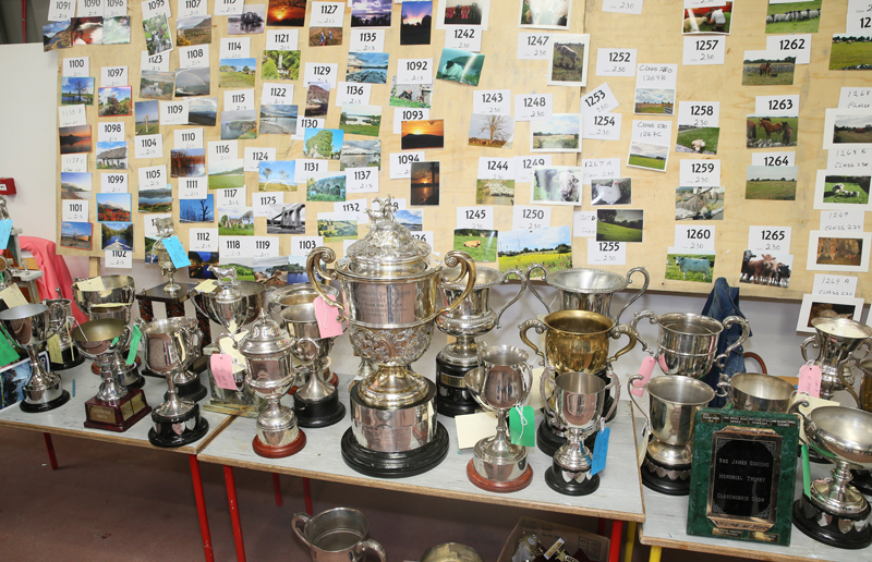 A great array of Cups at Claremorris Agricultural Show 2017 in the background are entries for next years Calendar. Photo: © Michael Donnelly