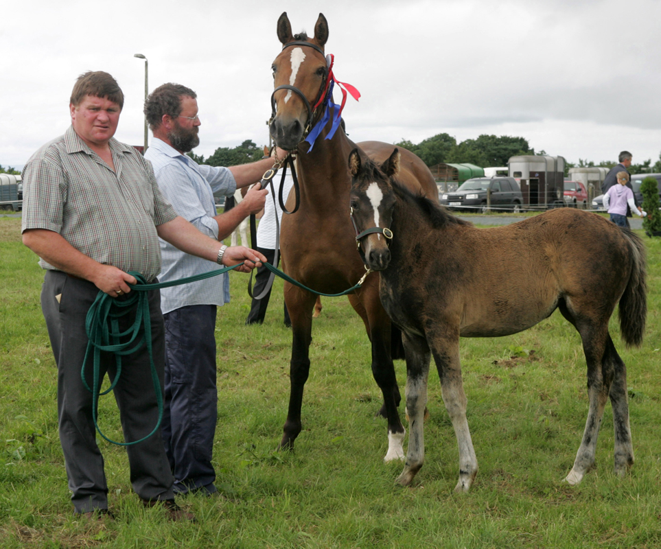"Pat Prendergast, Belfield House, Claremorris, pictured with ""Best Filly Foal"" at the 88th Claremorris Agricultural Show, showing  the mare was John Dixon. Photo: © Michael Donnelly"