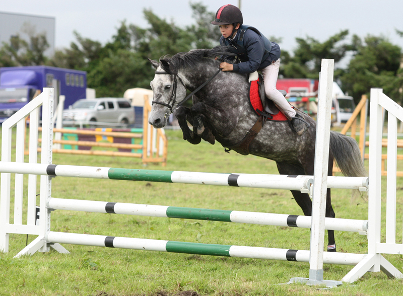 Cormac Hanley, Claremorris, on Emerald Pride clears the final jump to win the 138 ABC  Claremorris Show Jumping section at Claremorris Agricultural Show. Photo: © Michael Donnelly